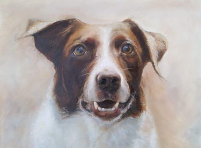 Pet Portrait Painting in Oil - Del - Dog